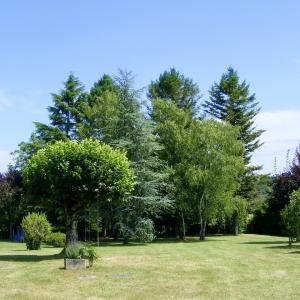 paysagiste dordogne - entretien parc arboré