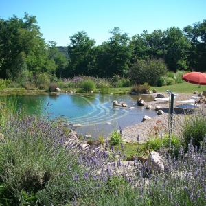 Piscine naturelle Dordogne